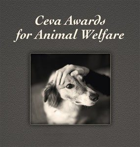 ceva-awards-logo3-285x300.jpg blue fox